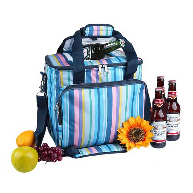 Stylish Lunch & Wine Cooler Bags And Box For 6 Cans With Insulated Material And Handles